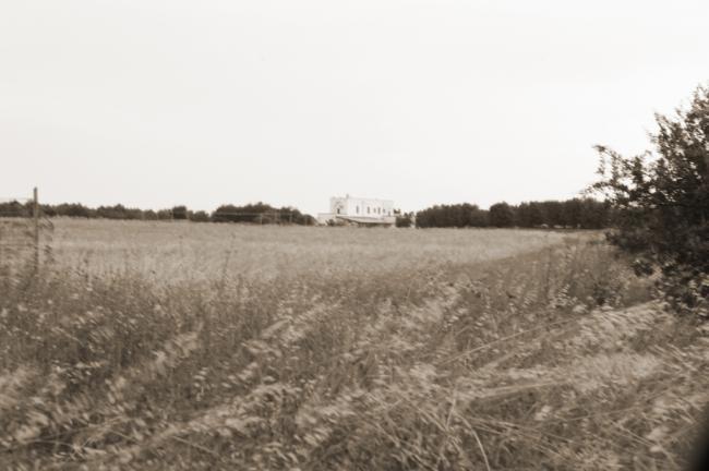 Masseria La Duchessa -  Agriturismo nel Salento
